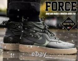 NIKE Air Force 1 Wtr GTX GORE-TEX CQ7211 300 Sequoia/Black/Olive Mountain UK 10